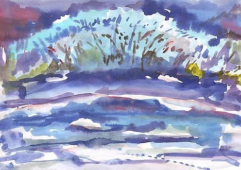 Winter bush by the river by Irina Dobrotsvet