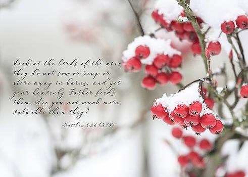 Winter Crabapples by Joni Eskridge