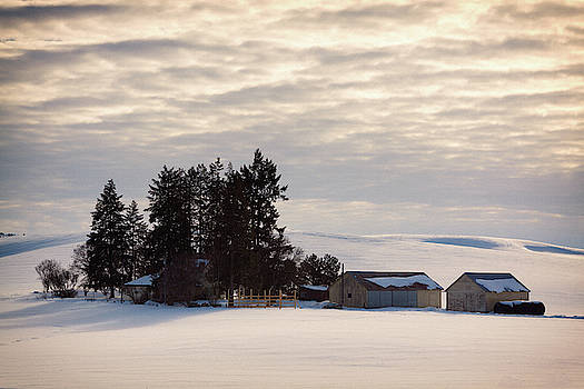 Winter Farm at Golden Hour by Tatiana Travelways