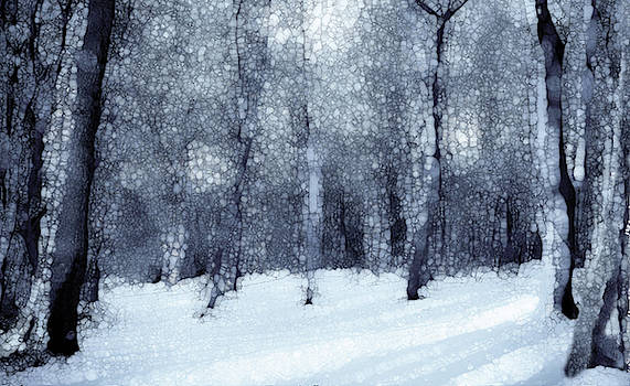 Winter Forest Black And White by Jack Zulli