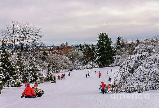 Winter fun in the park by Viktor Birkus