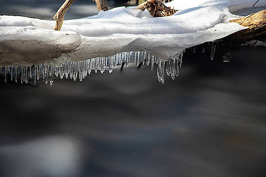 Winter Hangin' On by Brian Hale
