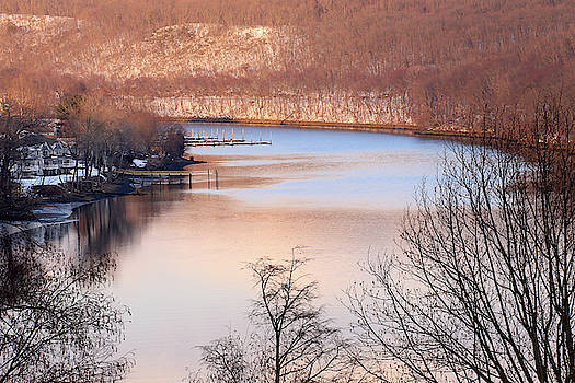 Winter In Pink And Blue by Karol Livote