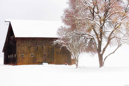 Winter In The Country by Dee Browning