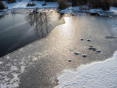 Louis Dallara - Winter Landscape at Whitesbog