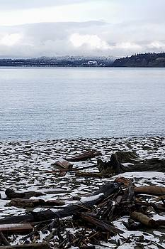 Tom Trimbath - Winter Meets The Beach