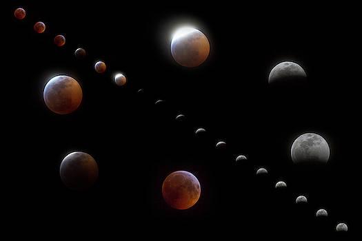 Winter Moon Phases by Betsy Knapp
