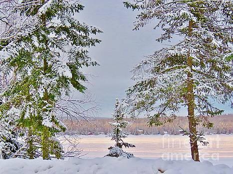 Winter morning by Brenda Ketch