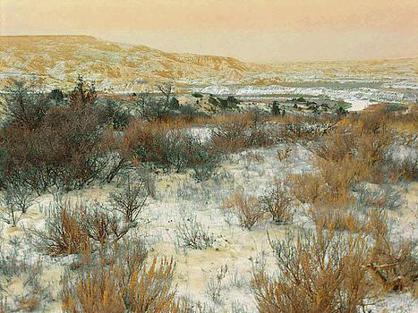 Winter near the Little Missouri by Cris Fulton