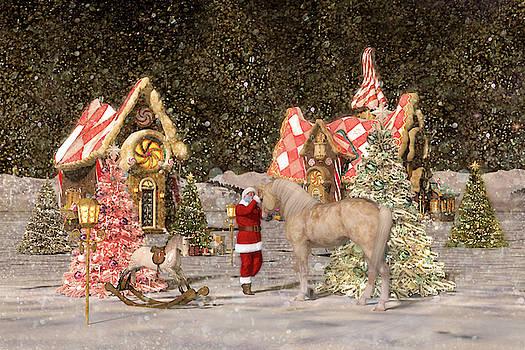 Winter Night's Dream by Betsy Knapp