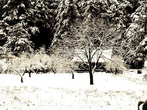 Winter on the Farm by Marie Jamieson