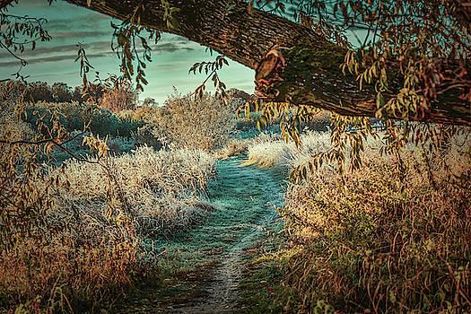 Winter portal #i0 by Leif Sohlman