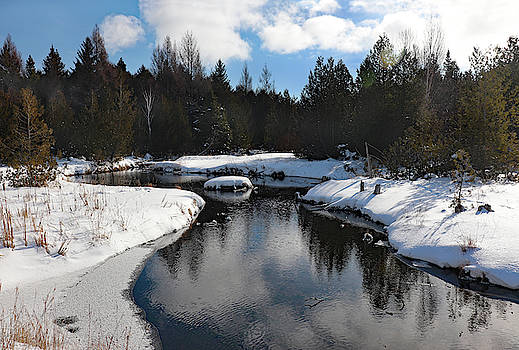 Winter Reflection at Three Springs by David T Wilkinson