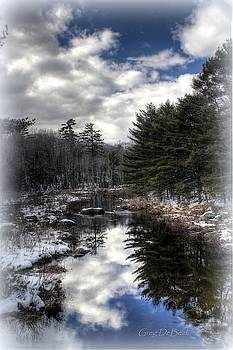 Winter Reflections by Greg DeBeck
