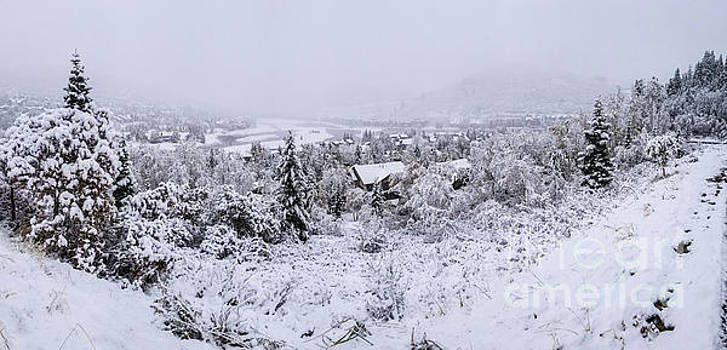 Winter Scene by Randy Kostichka