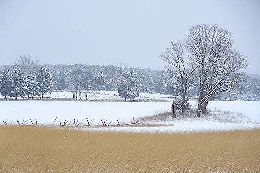 Winter Serenity on the Battlefield by Brandy Herren
