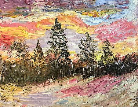 Winter Sky by Marita McVeigh