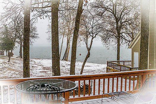 Winter Snowfall by David Wagenblatt