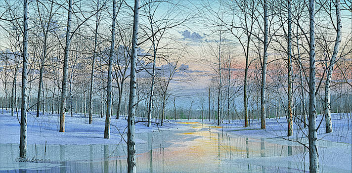 Winter Spectacle by Mike Brown