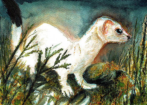 Winter Stoat by Belette Le Pink