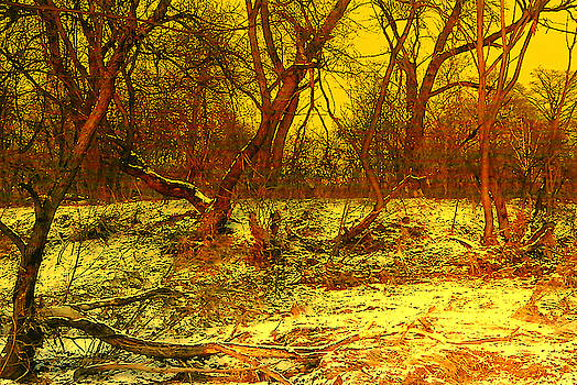 Henryk Gorecki - Winter Sunset
