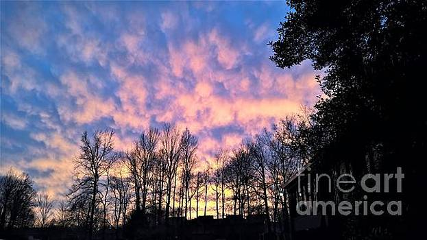 Winter Sunset in Kentucky by Tammie J Jordan