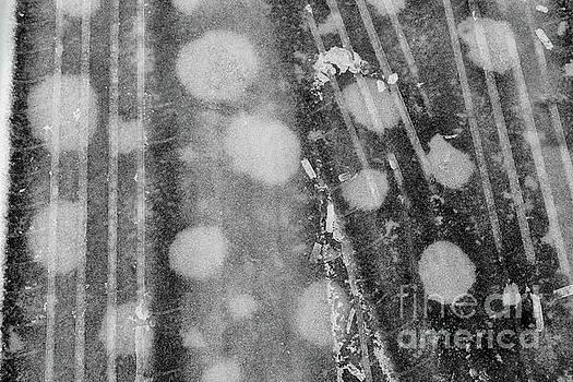 Winter Tracks III by Karen Adams