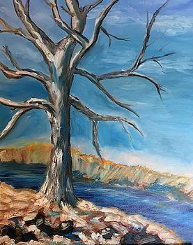 Winter Tree by Marita McVeigh