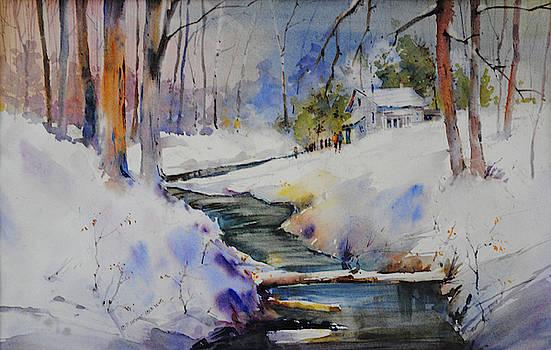 Winter Wilderness by P Anthony Visco