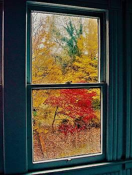 Winter Window by Randy Sylvia