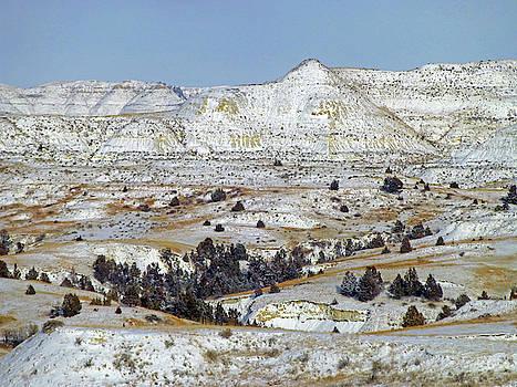 Winter Wonder in West Dakota by Cris Fulton