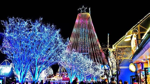 Winterfest Wonderland by Barkley Simpson