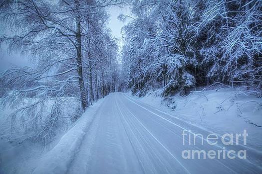Winterland 13 by Veikko Suikkanen