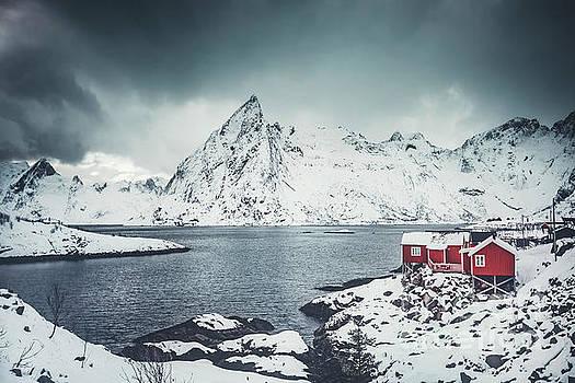 Winterland by Evelina Kremsdorf