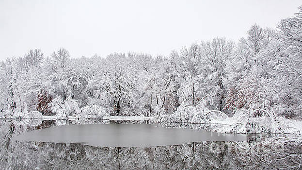 Winters Reflections by Terri Morris