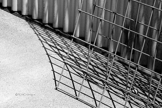 Hog Wire and Corrugated Steel  by Kae Cheatham