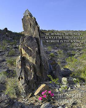 Wisdom From A Rock by Suzette Kallen