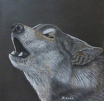 Wolf by Brenda Maas