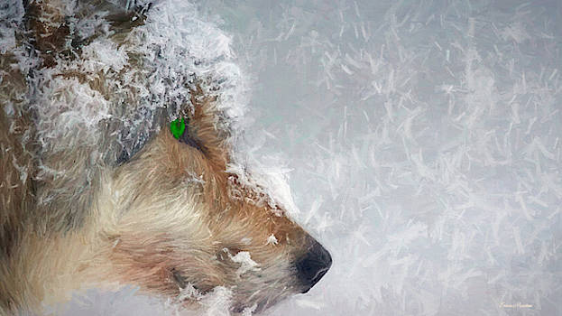 Wolf in the Snowstorm - Painting by Ericamaxine Price