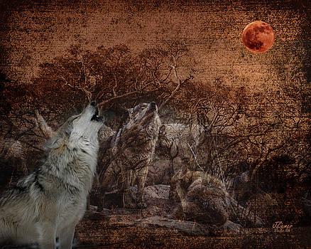 Wolf Moon by Jim Ziemer