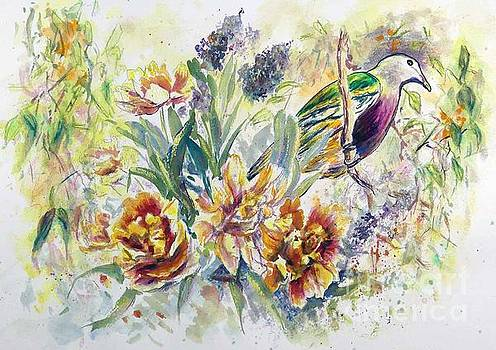 Wompoo Fruit Dove by Ryn Shell