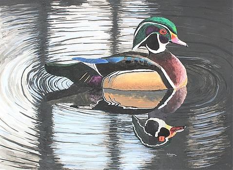 Wood Duck II by Nelson Hammer