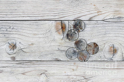 Wood with knots by Michal Boubin