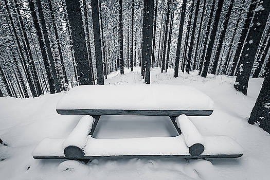 Wooden bench and table covered with snow among winter forest by Lukasz Szczepanski