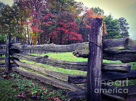 Wooden Fence On The Blueridge Parkway by Tom Gari Gallery-Three-Photography