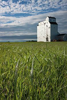 Wooden Grain Elevator on Canadian Prairie by Steve Boyko