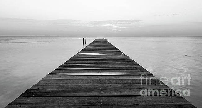 Tim Hester - Wooden Jetty At Dawn Black and White