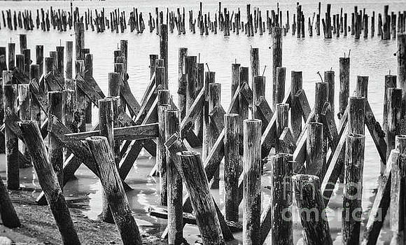Wooden Piling Abstract by Mitch Shindelbower