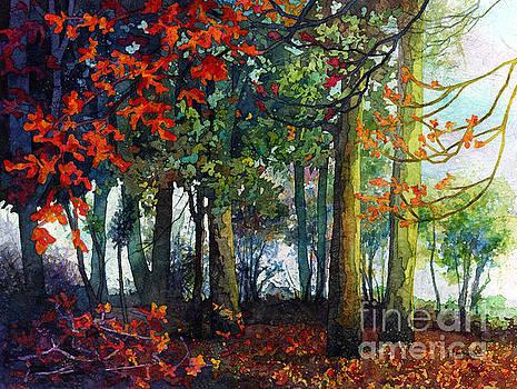 Woodland Trail by Hailey E Herrera