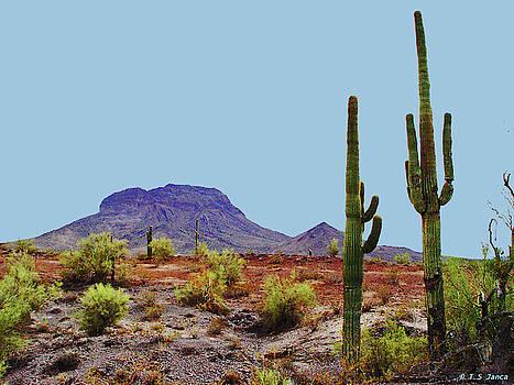 Woolsey Peak Arizona by Tom Janca